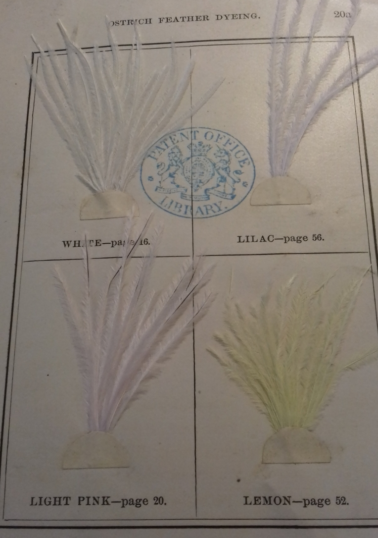 Page from manual on how to dye ostrich feathers